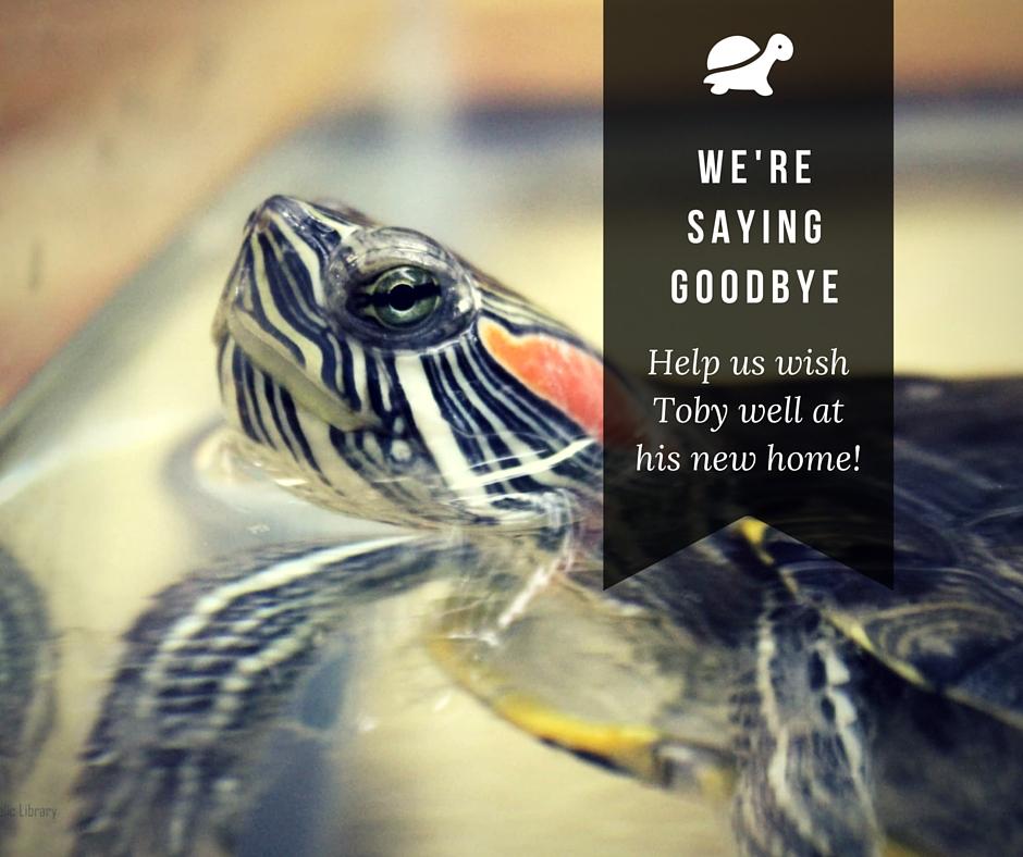We're saying Goodbye